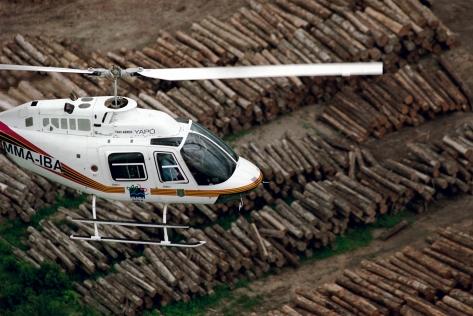 Operação Ibama e Greenpeace