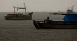 Os pescadores chegam a capturar cerca de 200 quilos de pescado por dia entre: piramutabas, sardinhas, filhotes, pescada amarela, robalo e tainhas. Curuçá·, Pará, Brasil. Foto: Paulo Santos