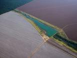 Grandes plantações de soja, milho e algodão cercam o Parque Indígena do Xingu (PIX) . Habitados pelas etnias Aweti, Ikpeng, Kaiabi, Kalapalo, Kamaiurá, Kĩsêdjê, Kuikuro, Matipu, Mehinako, Nahukuá, Naruvotu, Wauja, Tapayuna, Trumai, Yudja, Yawalapiti, o parque ocupa área de 2.642.003 hectares na região nordeste do Estado do Mato Grosso, De acordo com o IMEA - Instituto Mato-Grossense de Economia Agropecuária declarou último dia 7 de agosto de 2015 no informativo 365 divulgou dados novos das safras de soja em MT com a safra 14/15 consolidando-se com mais um ano de área e produção recordes. Por meio do método de Sensoriamento Remoto a nova área de 9,01 milhões de hectares apresenta-se 6,8% acima da área da safra 13/14. A produtividade já consolidada de 51,9 sc/ha elevou a produção para 28,08 milhões de toneladas. Os novos dados da safra 15/16 aumentaram ainda mais a expectativa de safra recorde já esperada no último relatório. A nova área de 9,2 milhões de hectares baseia-se na conversão de área de pastagem em agricultura observada há algumas safras. A continuidade de investimento em tecnologia da nova safra eleva a projeção de produtividade para 52,6 sc/ha, refletindo sobre a produção que deve bater um novo recorde em 2016, de 29 milhões de toneladas. Apesar do crescimento contínuo, a nova temporada deve atingir o menor avanço da produção desde a safra 10/11. Querência, Mato Grosso, Brasil. Foto Eric Stoner 24 e 25 de 07/2015