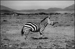 Tanzânia 1220010012©JMA